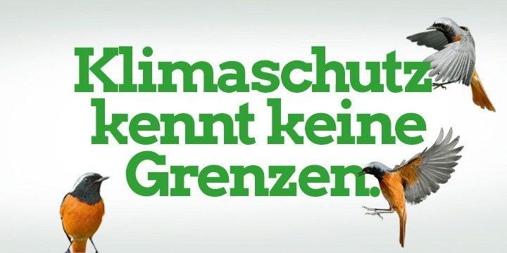 Europäisches Parlament ruft den Klimanotfall aus