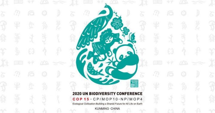 """Resolution zur UN-Biodiversitätskonferenz 2020 (""""COP 15"""")"""
