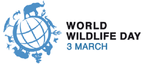PRESSEMITTEILUNG: Welttag des Artenschutzes: Europa muss mit gutem Beispiel vorangehen